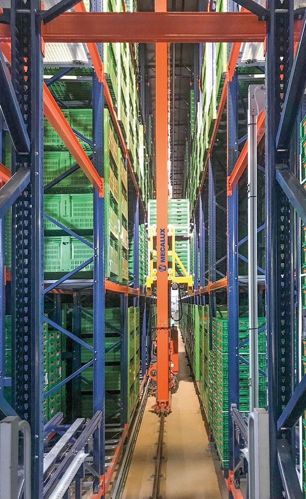 Nuevo almacén automático de Kiwi Greensun en Salvador de Briteiros