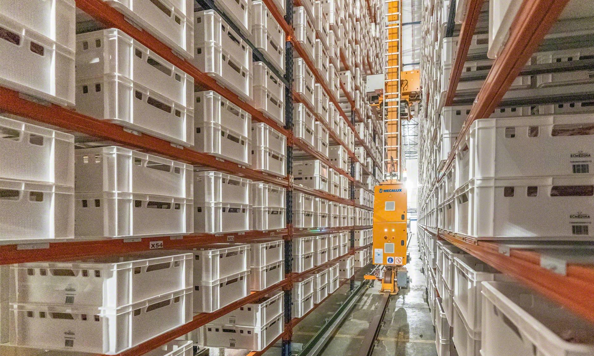 Elaborados Cárnicos Medina: 30 millones de kilos/año de ternera en un búfer automático